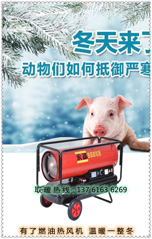 冬季取暖燃油热风机(1)