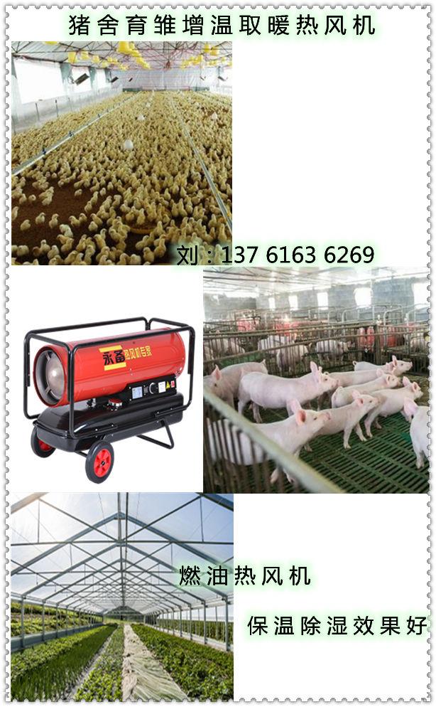 猪舍育雏增温取暖热风机(3)