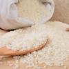 2020年新米 一剪稻圆粒香米 一口细腻 满口余香 空口都能吃一碗